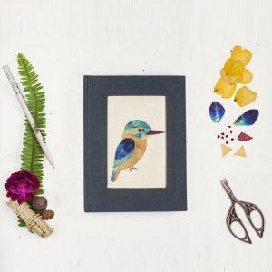 Kaleidoscopic Kingfisher Diary